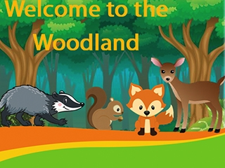 Woodland (Lower KS2)
