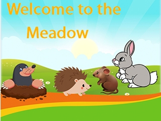 Meadow (KS1)